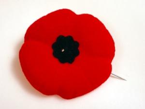 Poppy - Legion - Remembrance - November 11 - Poppies